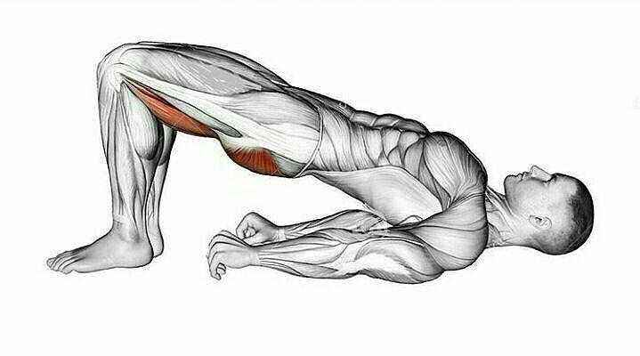 در حرکات اصلاحی پای پرانتزی باید قسمت زانو درگیر شود.