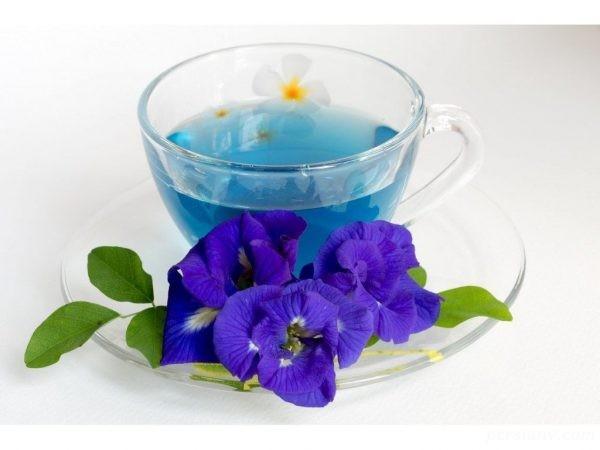 خواص گل گاوزبان برای تقویت اعصاب و کاهش استرس