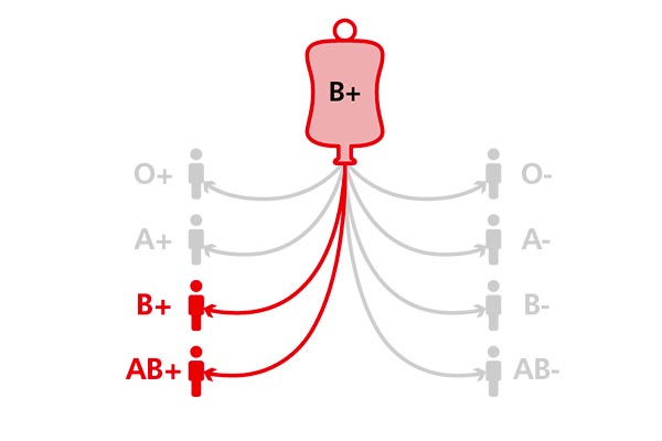 B-positive-blood-group 3