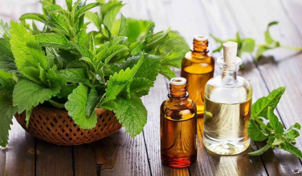 مسکن گیاهی برای درد بدن / مسکن گیاهی قوی