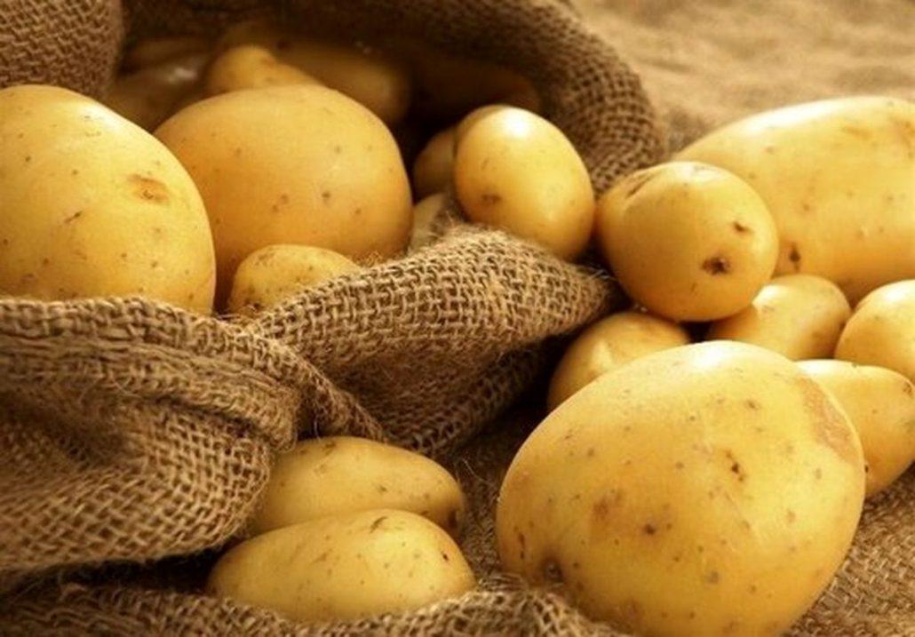 خواص سیب زمینی سرخ کرده / سیب زمینی در بدنسازی