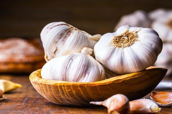 properties-of-garlic
