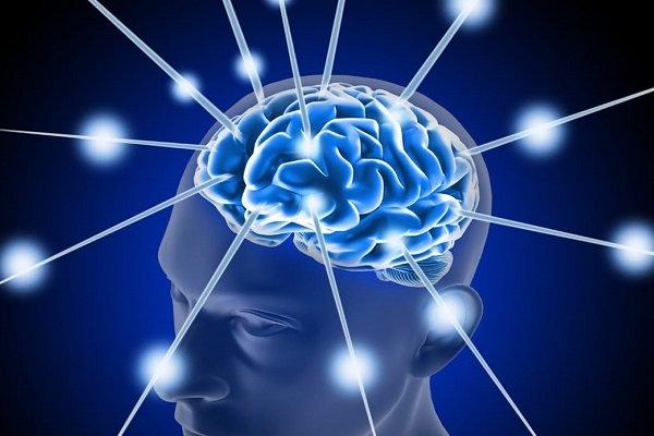 چگونه دوپامین را افزایش دهیم ؟