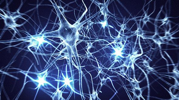 نقش هورمون دوپامین در بدن ایجاد شادی و انگیزه است
