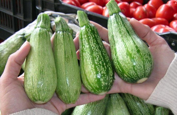 کدو سبز برای دیابت مفید است