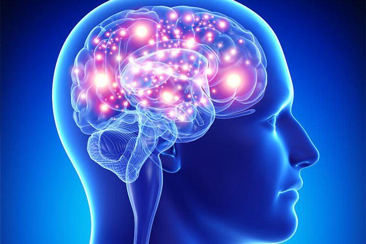 چگونه دوپامین را افزایش دهیم / افزایش دوپامین و طب سنتی