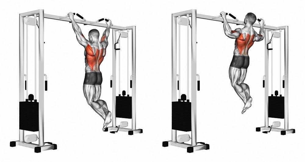 تقویت عضلات پشت بازو