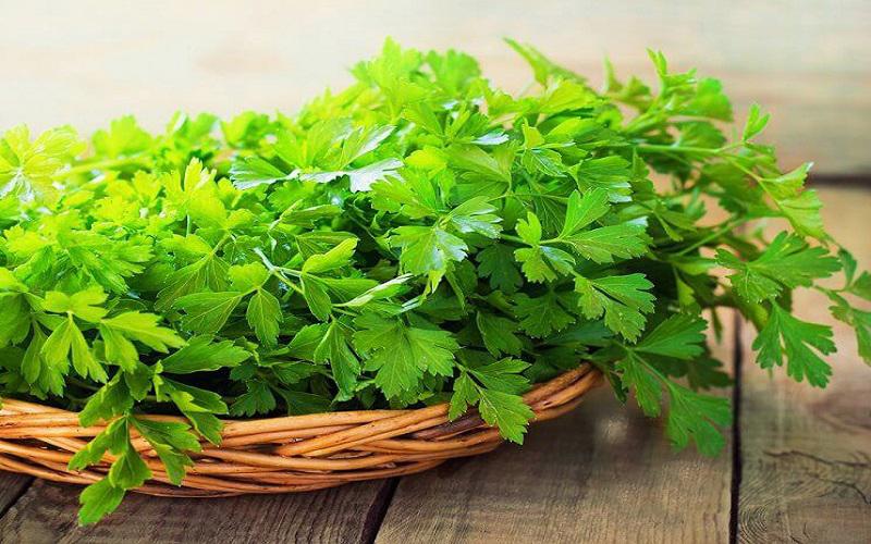 سبزی آش شامل چیست