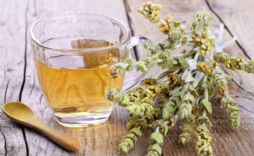 زمان مصرف چای کوهی